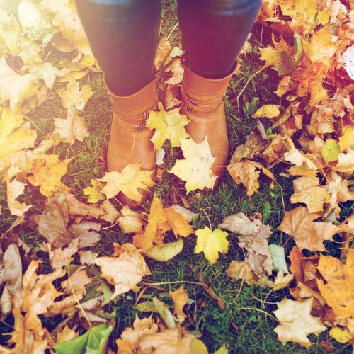 season and people concept - female feet in boots with autumn leaves on ground